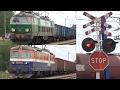 12 Pociągów - Zielona ET22, Pendolino i inne na przejazdach linii 91 / Polish Railroad Crossings