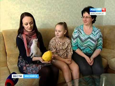 Красноярская семья выращивает в квартире экзотические фрукты