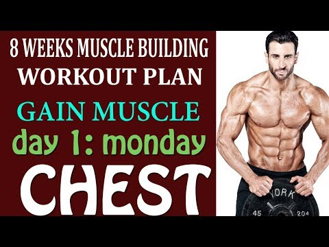 8 Week Chest Workout for much better Results