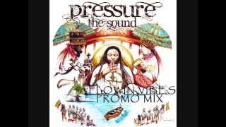 FLOWIN VIBES - ALBUM PROMO MIX (PRESSURE - THE SOUND / I GRADE RECORDS 2014)