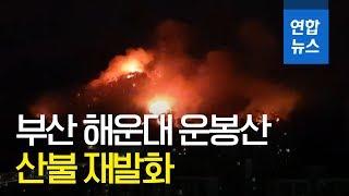 제보 부산 운봉산 산불 세 번째 재발화…기장 삼각산도 …