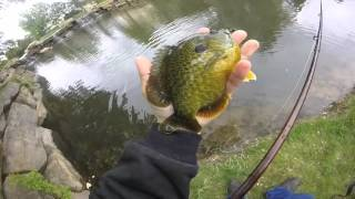 fly fishing for panfish with a hopper dropper rig with flys from brimwars