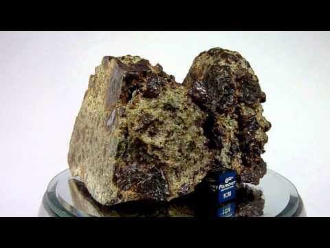 Meteorite NWA 8251 Achondrite Lodranite Breccia