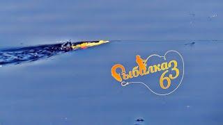 Рыбалка на спиннинг летом ловля хищника с лодки в жару