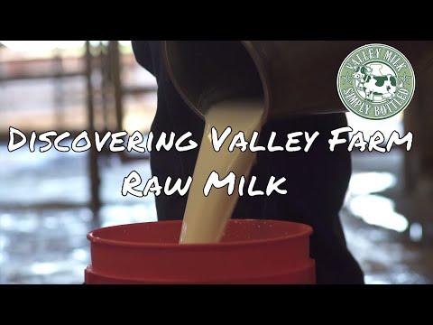 Discovering Valley Farm Raw Milk | Documentary