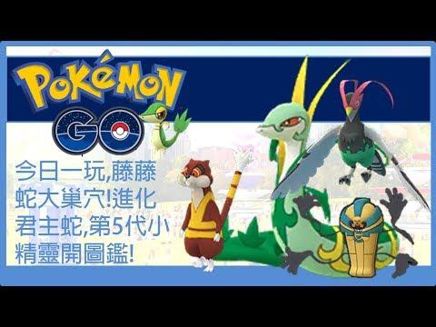 Pokemon go 今日一玩,藤藤蛇大巢穴!進化君主蛇,第5代小精靈開圖鑑! - YouTube