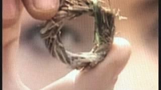 Chiếc nhẫn cỏ