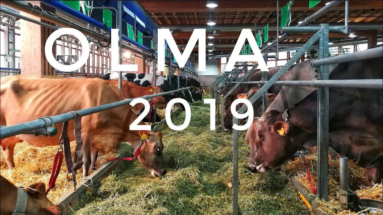 Download OLMA Messe 2019