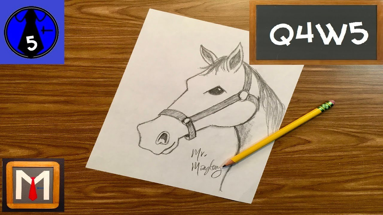 How to Draw a Horse Head ✏🐴