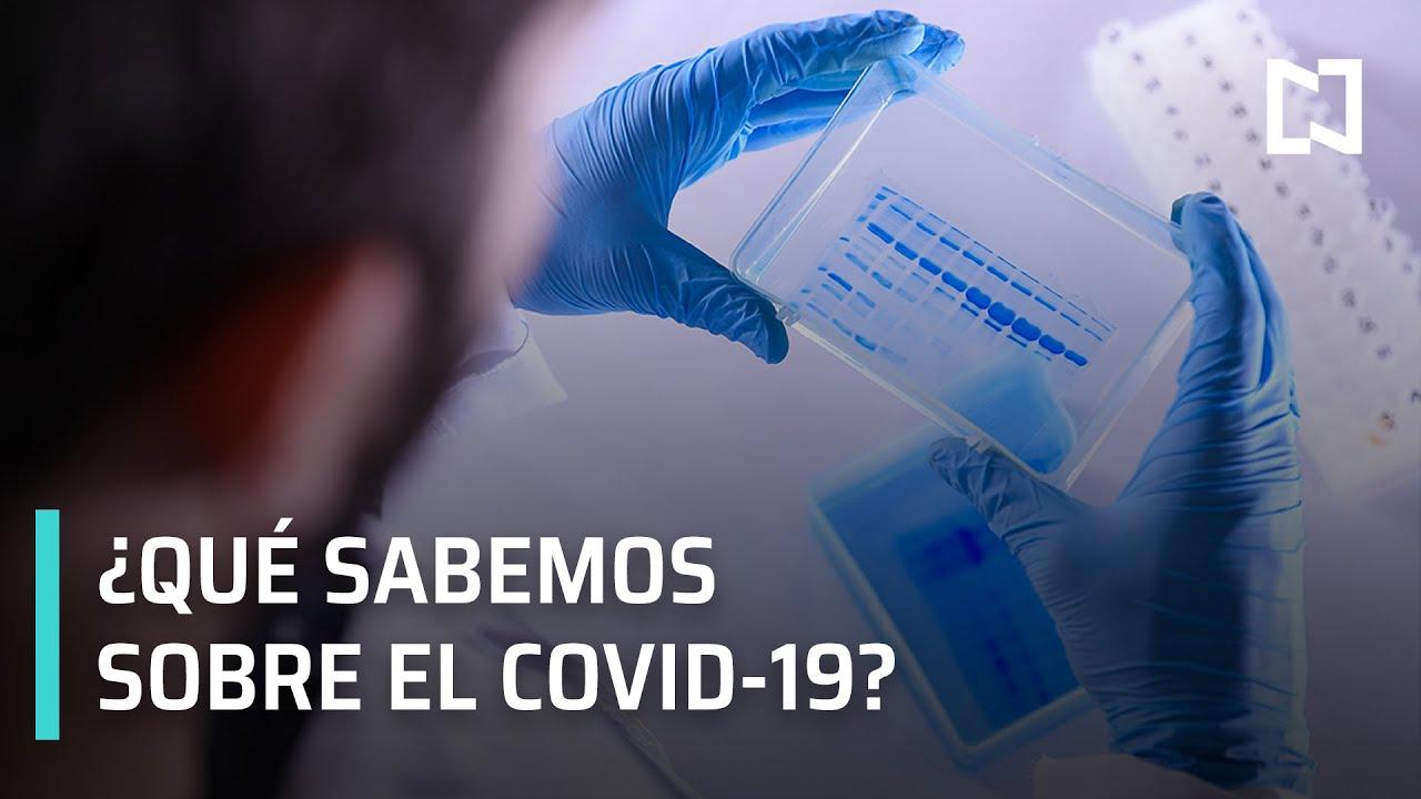Qué sabemos del COVID-19? | Coronavirus en el mundo - YouTube