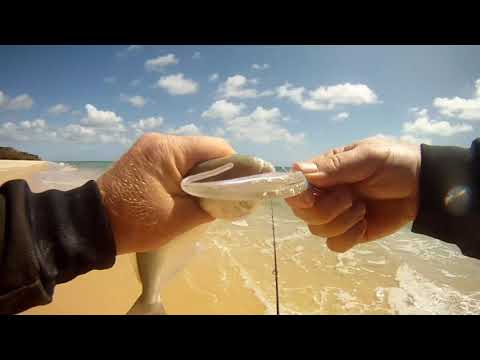 Surf Fishing With Soft Plastics