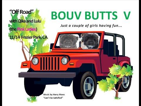 Bouv Butts V  Off Roading V5