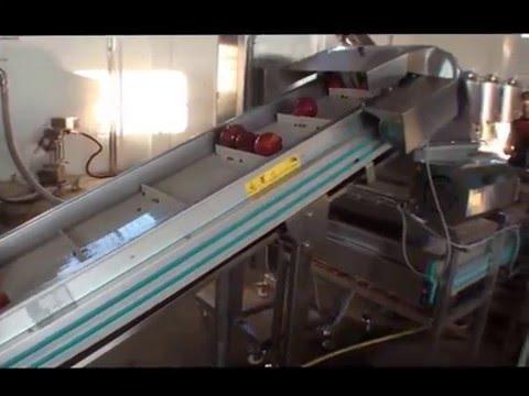 Γραμμή παραγωγής χυμού ΡΟΔΙΟΥ ΥΙΟΙ ΠΑΝΑΓΙΩΤΗ ΚΑΡΑΒΑΤΣΗ  SRAML NIKO SI