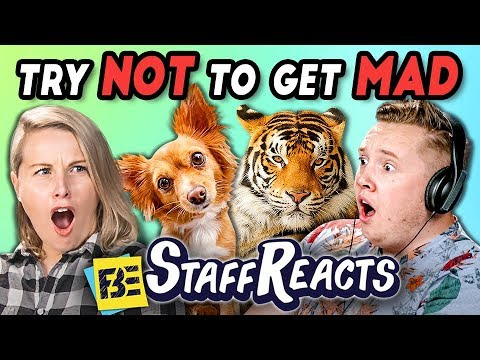TRY NOT TO GET MAD CHALLENGE #3 (ft. FBE Staff)