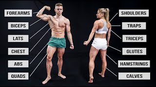 Hit Every Muscle in 30 Minutes (Full Body Workout Routine!)