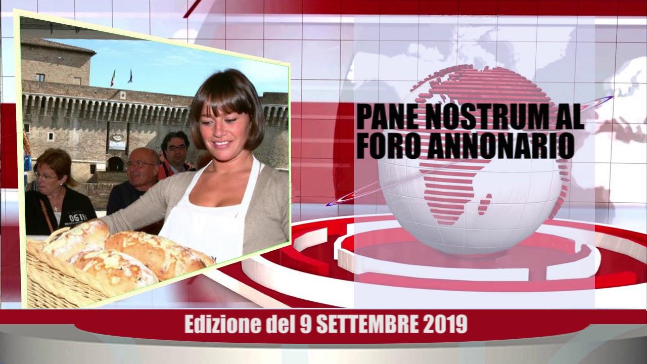 Velluto Senigallia Tg Web del 09 09 2019