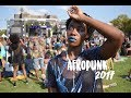 ACTUALLY WORTH THE MONEY  | BROKE GIRL'S AFROPUNK, 2017