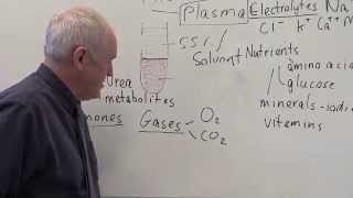 Blood 1, Plasma, constituents and functions
