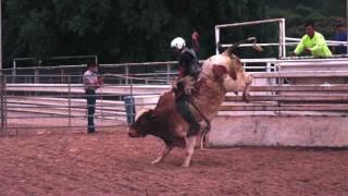 Rocker G Livestock Buck Out 6-16-17