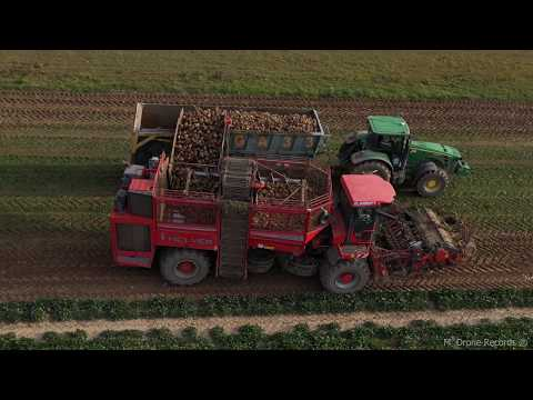 Sugar Beet Harvest - HOLMER Terra Dos T3 - AGROPT [4K Resolution]