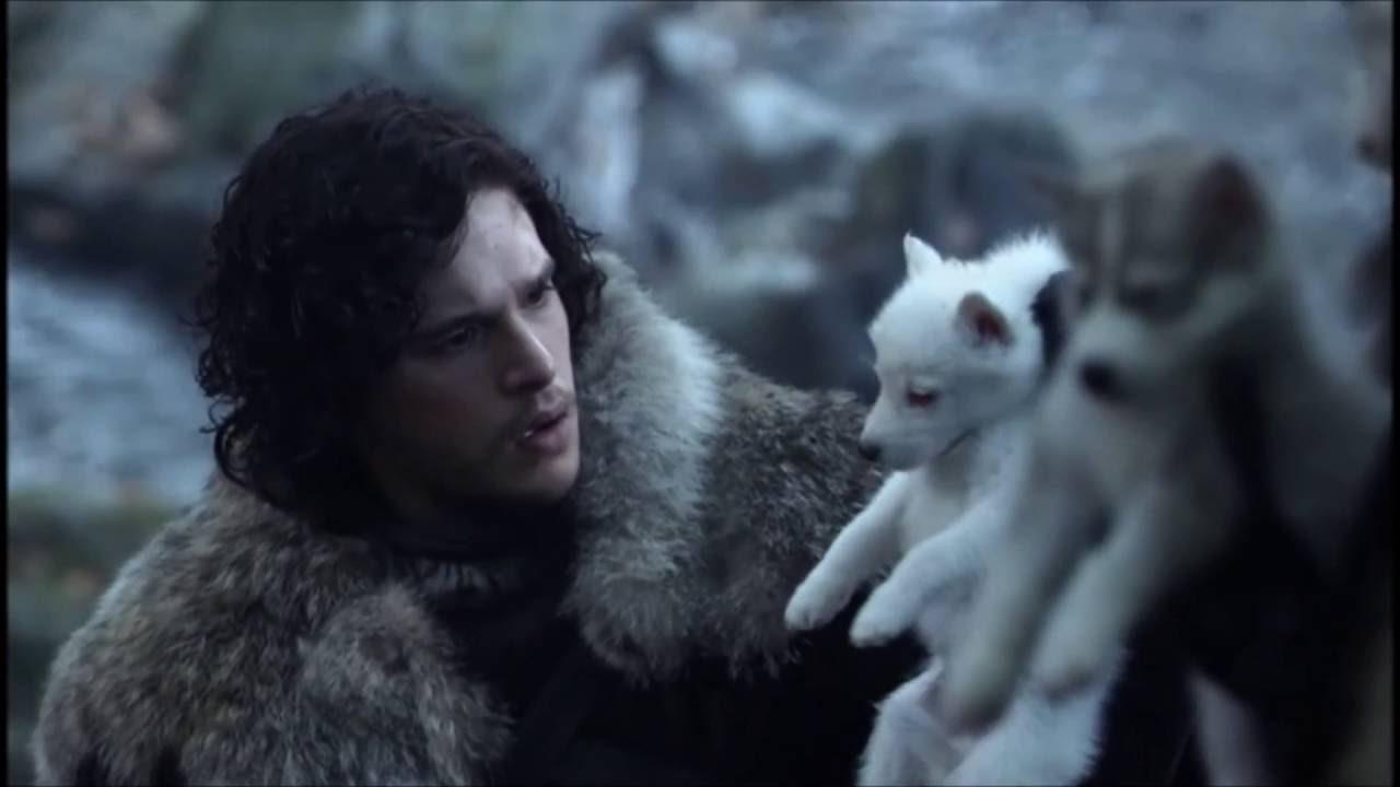 Game Of Thrones Cat Death