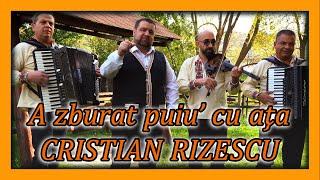 Descarca Cristian Rizescu - A zburat puiu' cu ata NOU 2020