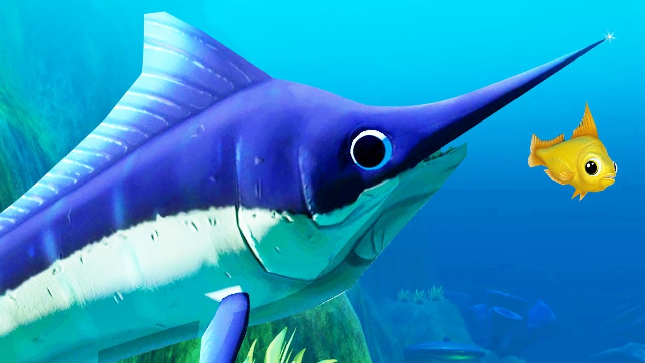 The swordfish is amazing new feed and grow fish update for Fed and grow fish