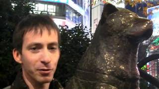 Верный пес Хатико на станции Сибуя в Токио