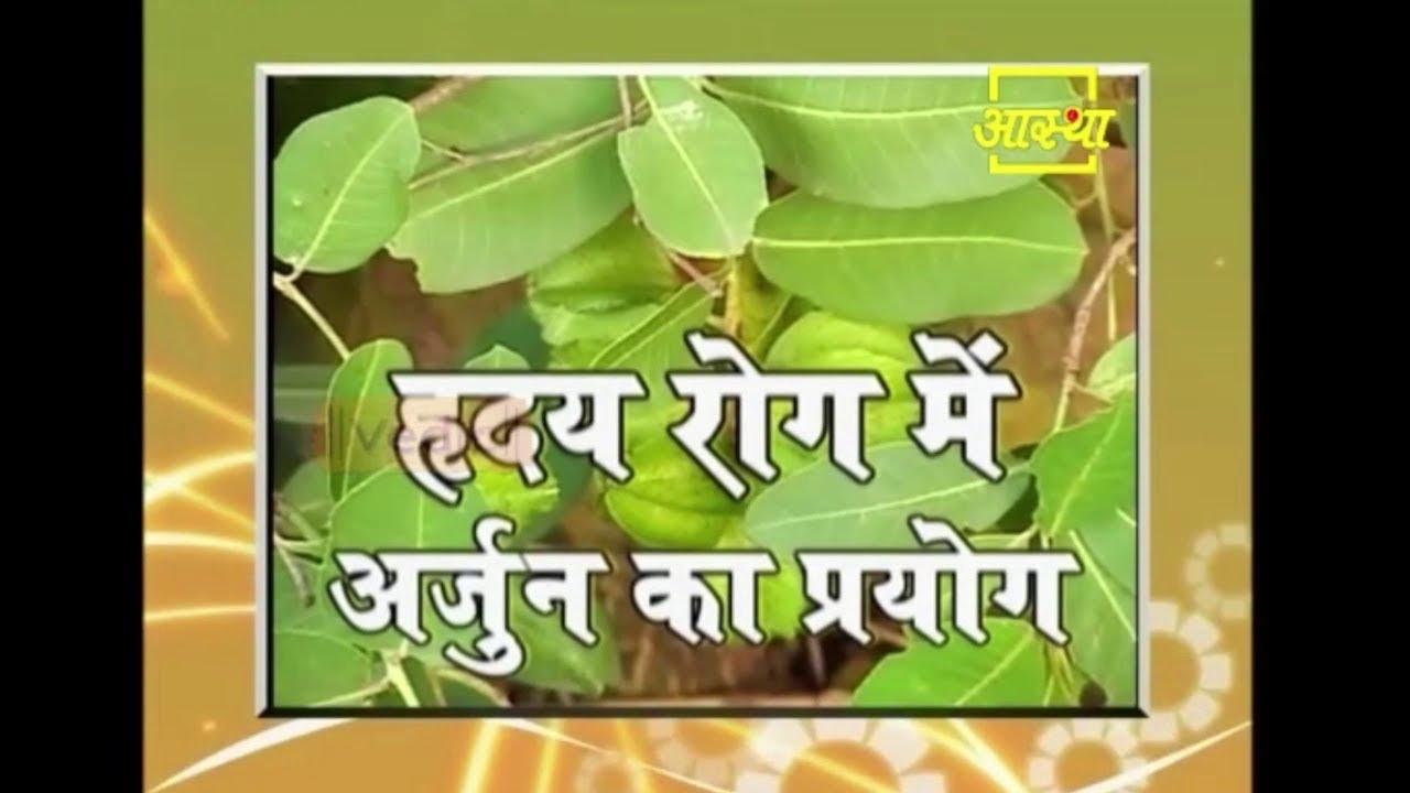 Ayurvedic Benefits of Arjun Ki Chaal for Heart Disease | Acharya Balkrishna