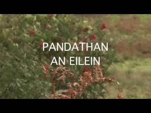 Pandathan an Eilein