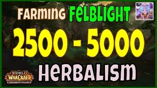 WoW 6.2 Felblight Gold Farming Guide - Herbalism - 2500 to 5000 Gold Per Hour!