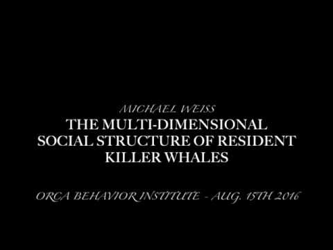 The Multi-Dimensional Social Structure of Resident Killer Whales