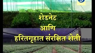 Krishidarshan 01 March 2018 - शेडनेट आणि हरितगृहात संरक्षित वातावरणातील शेती