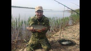 #3 Рыбалка с Берега на реке Волга. Ловля Голавля. Как Клюет Рыба на Закидушки - Донки