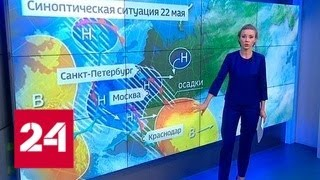 """""""Погода 24"""": в Европейской России жару смягчат кратковременные дожди - Россия 24"""
