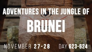 Adventures in the jungle of Brunei | Day 623 - 624 | Plug Me In
