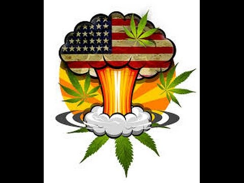 Wake N Bake News 239