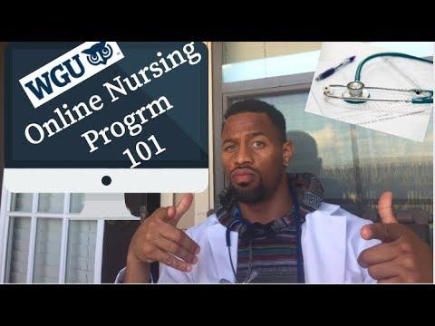 Online Nursing School For Dummies: WGU