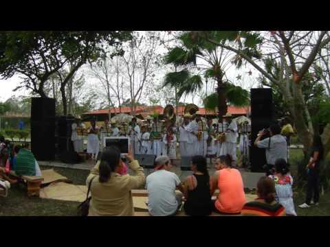 Foxtrot - Šīberis - Orquesta de instrumentos de viento - Pūšamo instrumentu orķestris