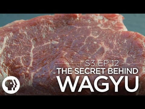 The Secret Behind Wagyu Beef | Original Fare | PBS Food