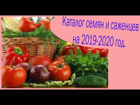 Каталог семян и саженцев на 2019-2020 год.