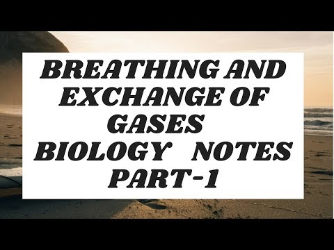 breathing and exchange of gases || handwritten notes || biology || part-1
