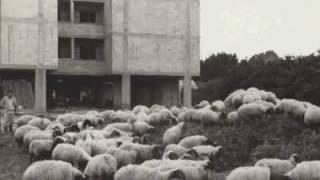 כפר-סבא-ערים ראשונות