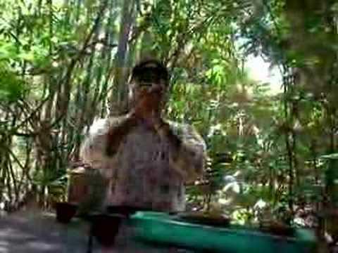 Ho Chi Minh song (vietkong song) ENGLISH VERSION
