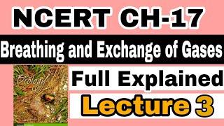 NCERT CH-17 Breathing and Exchange of Gases (HUMAN PHYSIOLOGY) Biology LECTURE 3 FOR NEET/AIIMS
