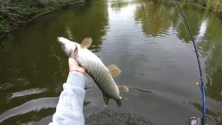 ЭТА приманка ловит ЩУК. Рыбалка на Урале.