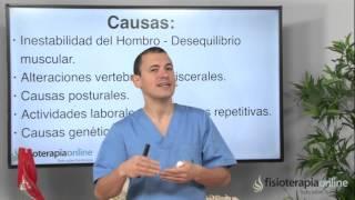 Del manguito rotador articulos tendinitis