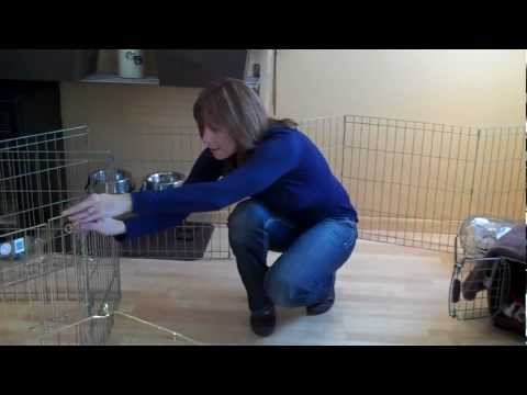 Just Paws Training x-pens, crates & confinment.MP4