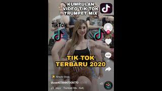 Download Kumpulan video tik tok terbaru 2020 - Trumpet Mix