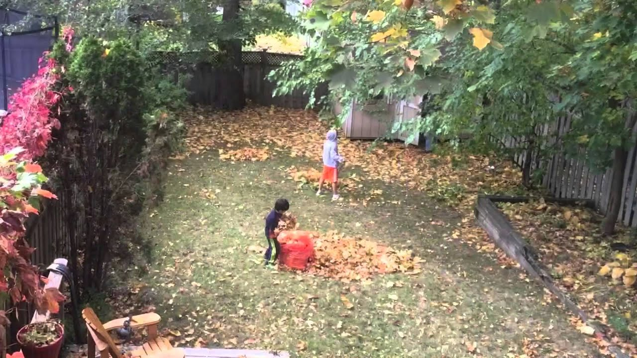 Backyard Cleaning kids sunday chores, fall cleaning backyard - youtube